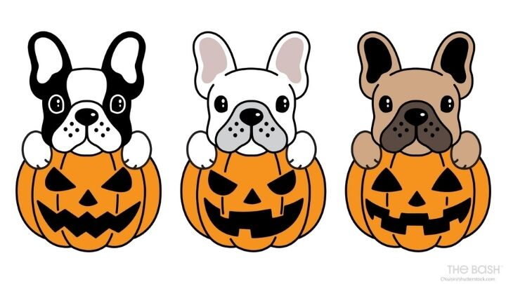 Cute Halloween Zoom Background - Pumpkins and Puppies