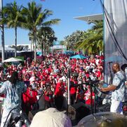 Miami Beach, FL Steel Drum Band | Steel Band Delight