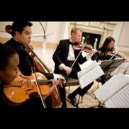 Chicago, IL String Quartet | Accolade Musicians (Quartet, Trio, Or Duo)