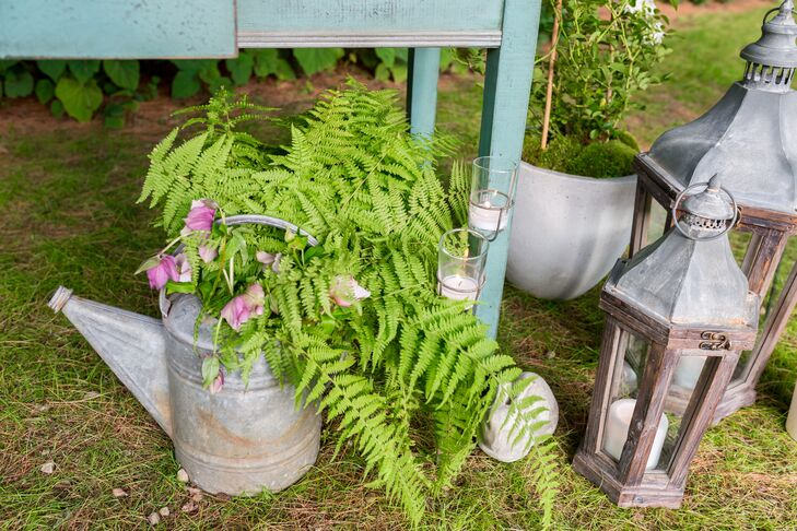 Ferns in Vintage Watering Can Decor