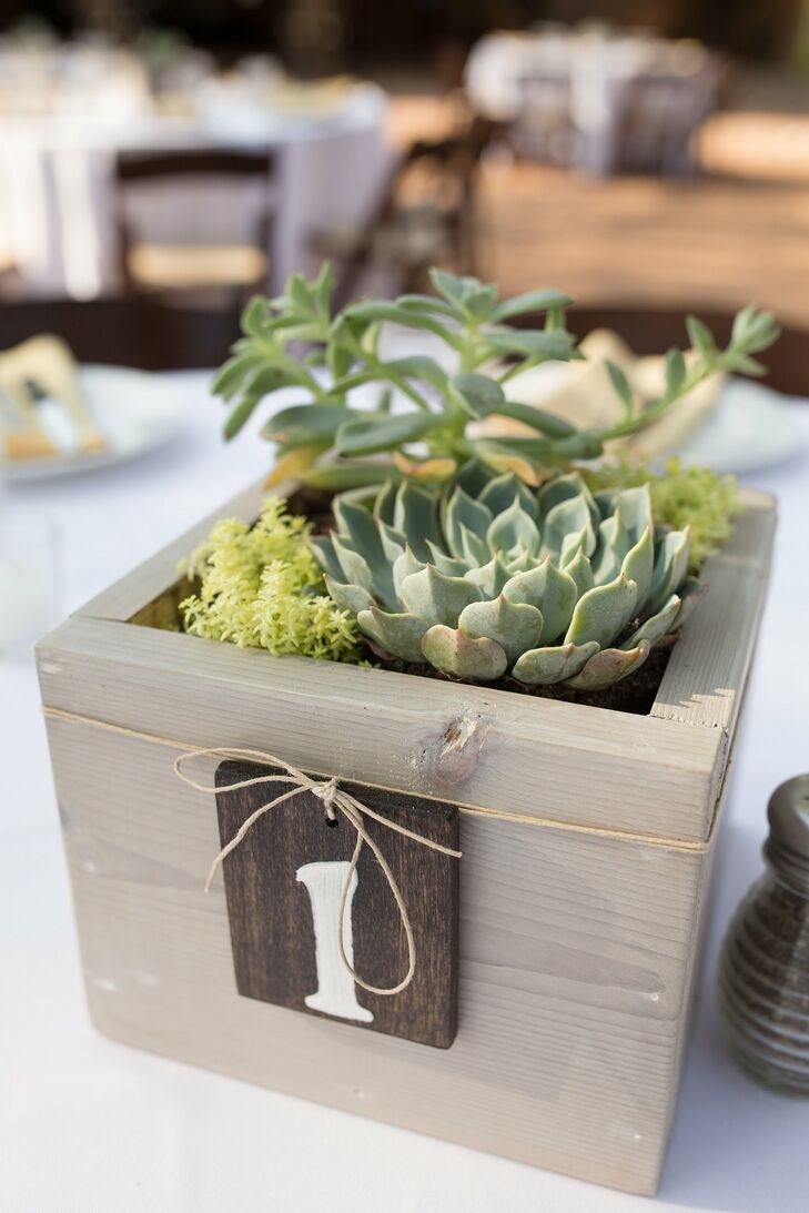 Table Number Wooden Boxes
