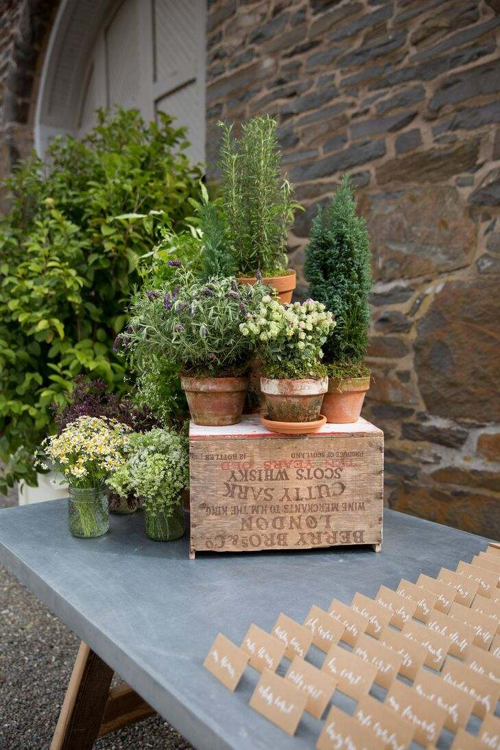 Potted Plant and Vintage Crate Display