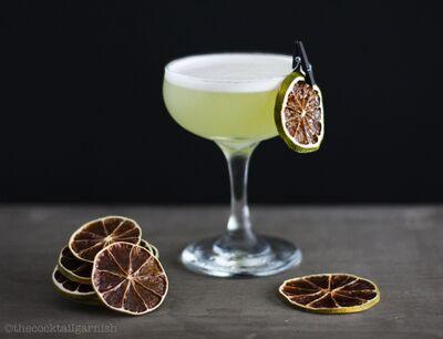 The Cocktail Garnish