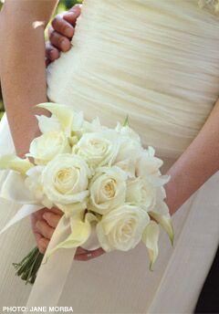 Kate Healey Big Sur Flowers