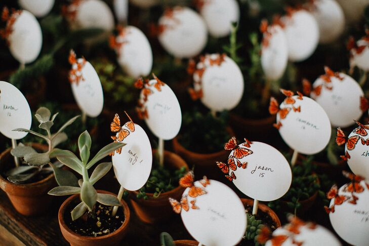 Potted Succulent Favors and Butterfly Escort Cards