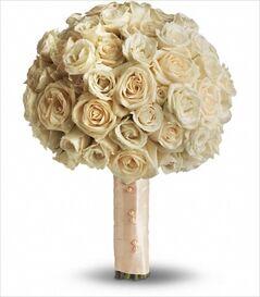 Stephanie's Flowers, Inc.