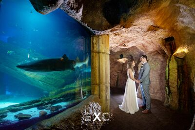 Atlantis Banquets & Events/Long Island Aquarium