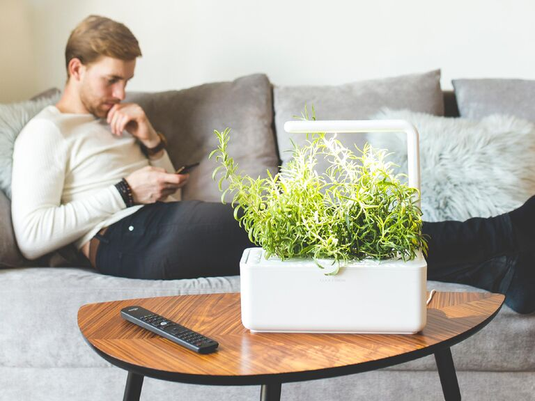 Click and Grow indoor herb garden son-in-law gift idea