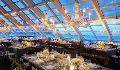 Adler Planetarium Wedding.Adler Planetarium Reception Venues Chicago Il