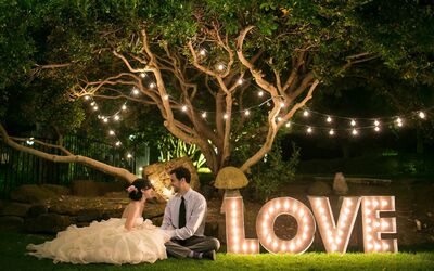Above & Beyond Wedding & Event Planning