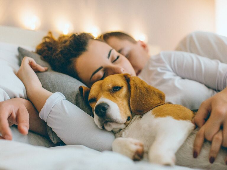 Getting A Dog Makes Relationship Stronger According To Research