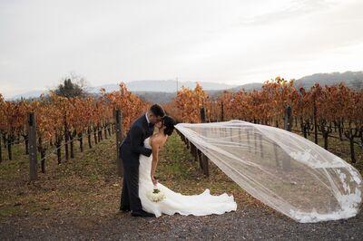 Landmark Vineyards