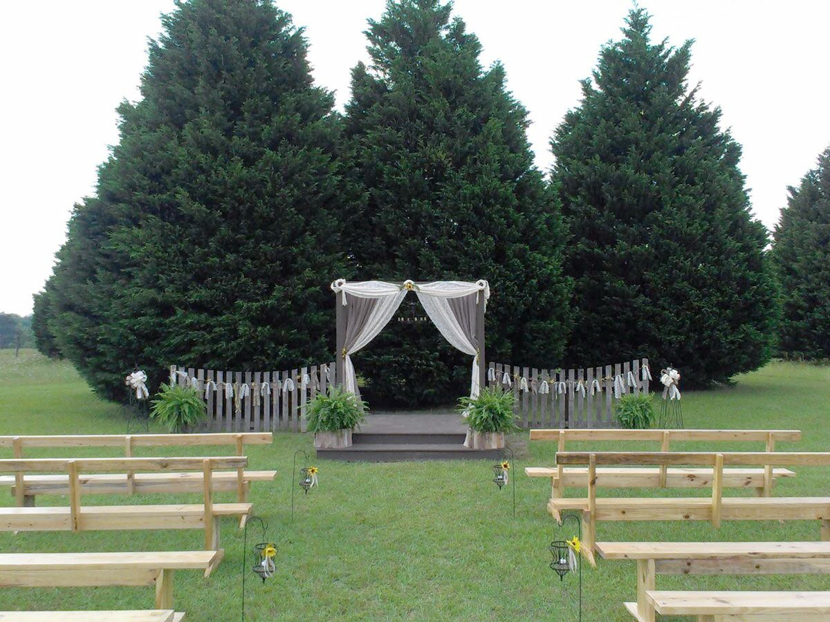 Christmas Tree Farm Weddings.10 Christmas Tree Farms Where You Can Actually Get Married