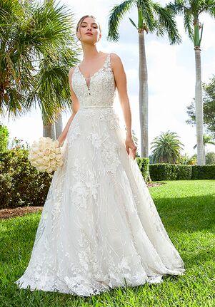 Adrianna Papell Platinum Louisa A-Line Wedding Dress
