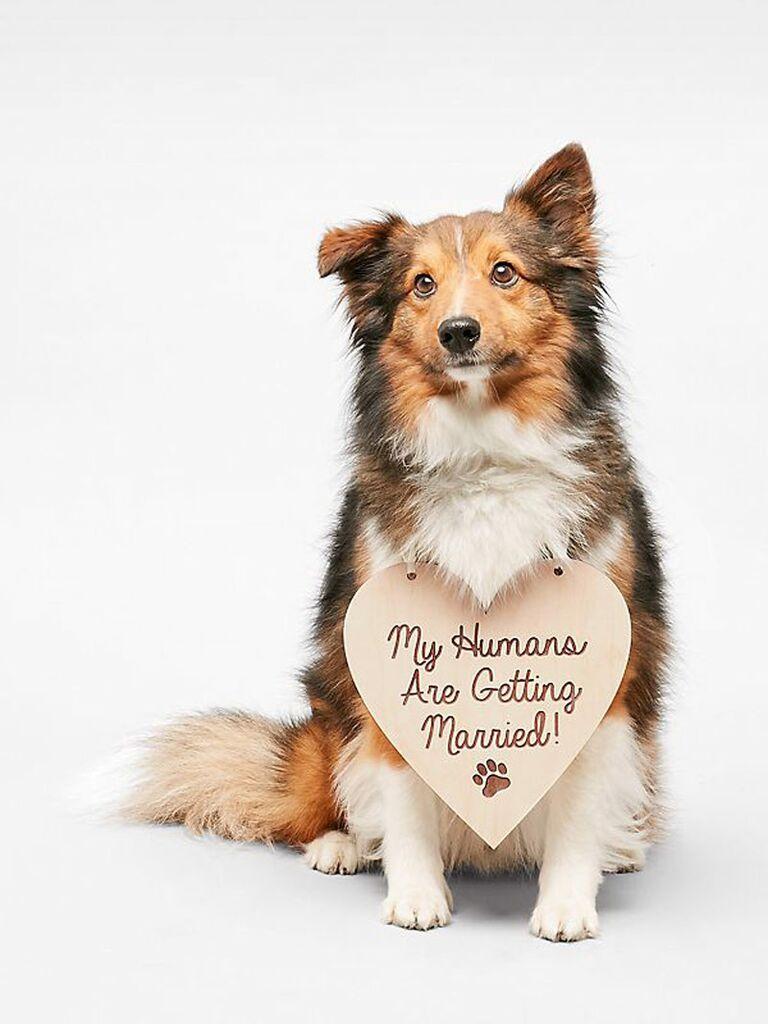 Dog engagement photo sign