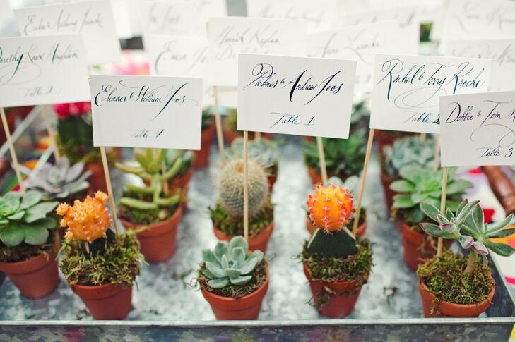 Succulent and Cactus Escort Card Holders