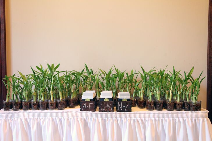 Inspired by a bamboo plant they've had since they bought their first house together, Brooke and Brad had bamboo details throughout their wedding. Each guest went home with baby bamboo plants. The simple bamboo-adorned escort cards, made by the maid of honor, were displayed in wooden boxes.