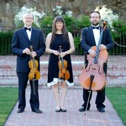 Fairfield, CA Classical Trio | Quartet / Trio Maxim
