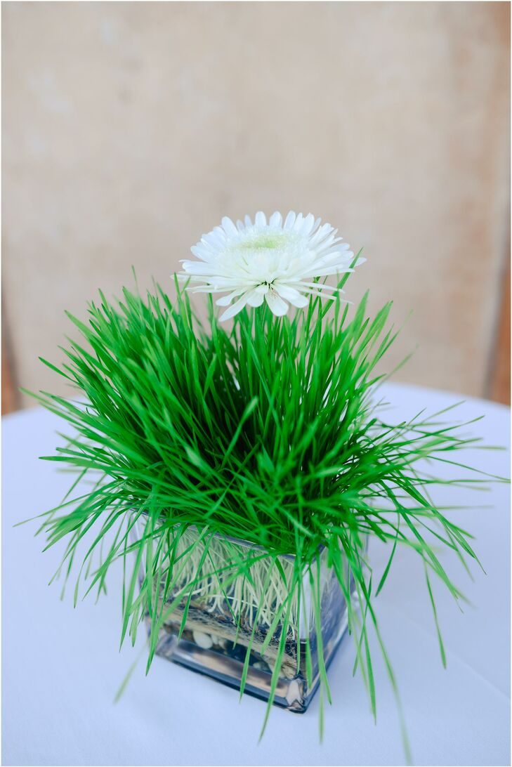 Centerpiece with Grass and White Daisies