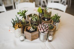 DIY Succulent Centerpieces in Recycled Planters
