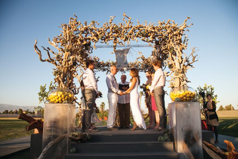 Driftwood and Succulent Ceremony Chuppah