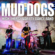 West Des Moines, IA Cover Band | Mud Dogs Band - The Midwest's Top Rated Party Band
