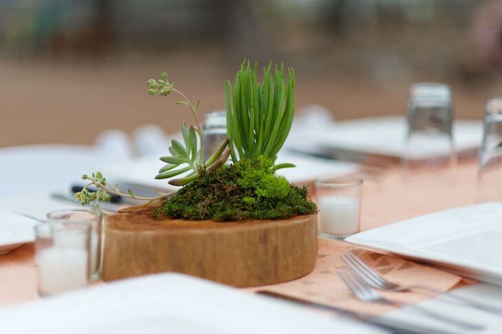 Natural Succulent Table Centerpiece on Wood Slab