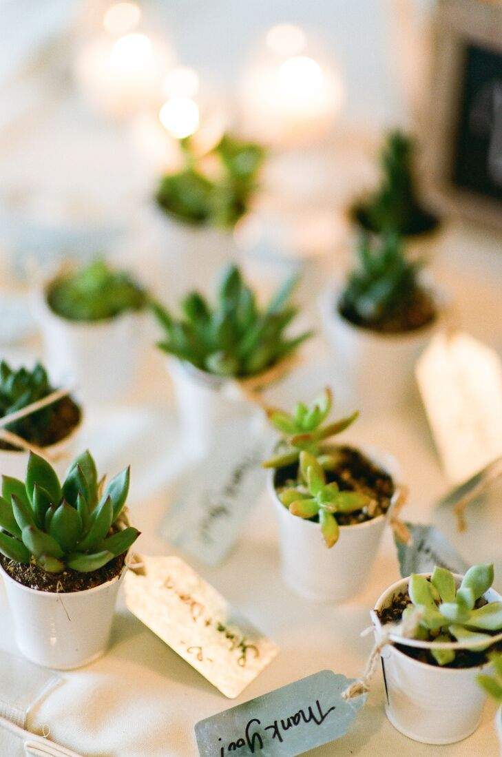 """At the end of the evening, Sylvia and Daniel sent their friends and family members home with pint-size pots filled with lush green succulents. """"We wanted our guests to take with them a piece of our wedding that would last beyond the night itself,"""" Sylvia says, """"so we bought baby succulents from California for them to take home as a reminder that love continues to grow with proper care."""""""