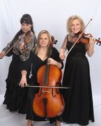 Sacramento, CA String Quartet | Harmony Strings