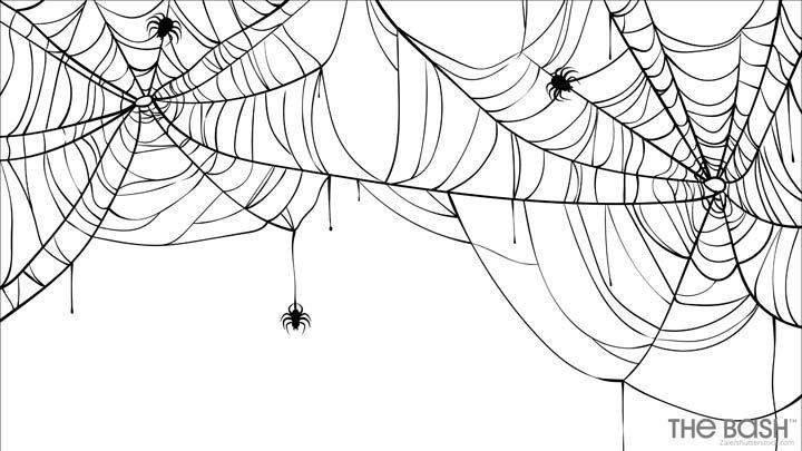 Halloween Zoom Background - Spider Web