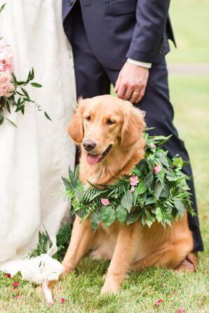 Fern and Greenery Dog Collar
