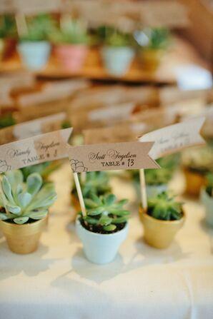 DIY Succulent Escort Cards