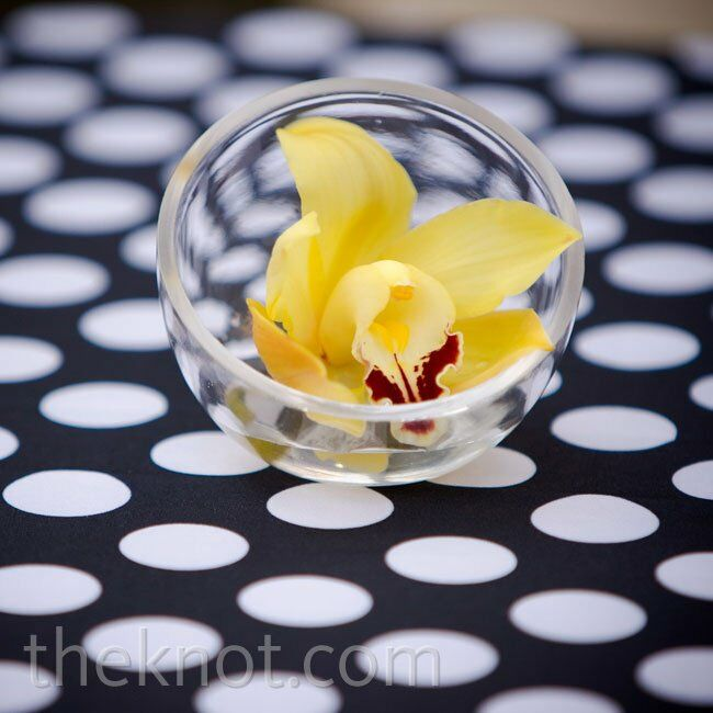 Small Yellow Orchid Centerpiece