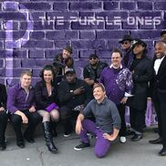 Oakland, CA Prince Tribute Act | The Purple Ones - Insatiable Tribute to Prince