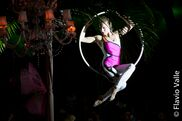 Tampa, FL Circus Act | Tampa - Cirque And Circus Events