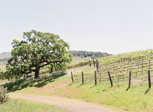 Vineyard Wedding at Carneros Inn in Napa, California