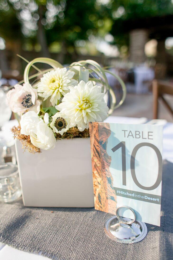 Modern Desert-Themed Table Numbers