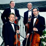 New York City, NY Classical Quartet | Art-Strings Ensembles