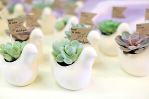 Ceramic Bird Potted Succulents Wedding Favors