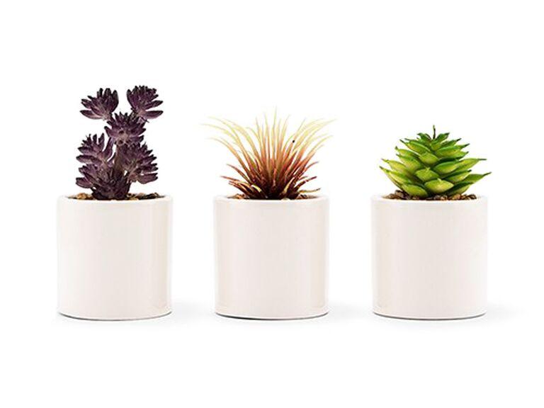 small faux succulent plant