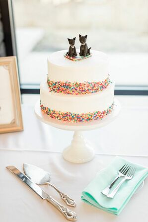 Cat Cake Toppers for Wedding at Blue Vista in Randolph, Kansas