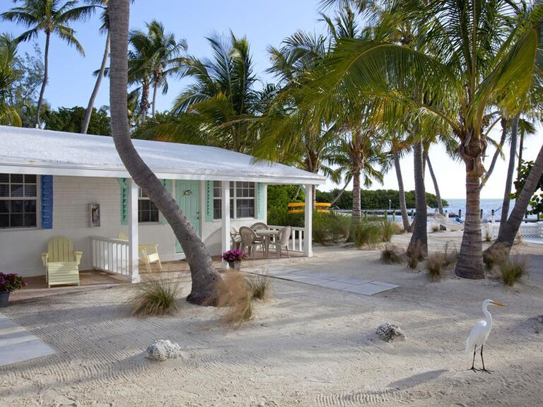 White cottage on the beach with palm trees and bird in foreground