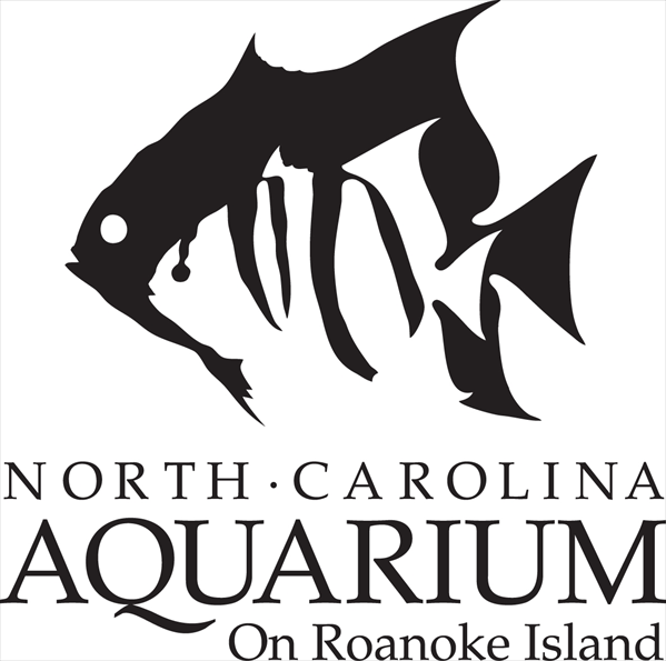 North Carolina Aquarium On Roanoke Island Manteo Nc