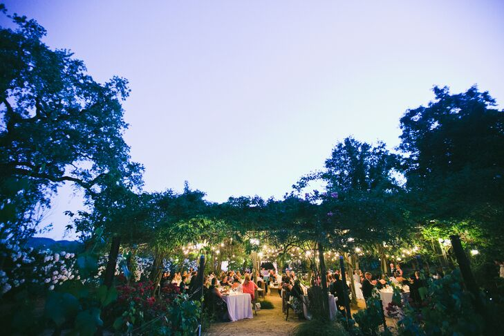 Romantic Reception at Campovida in Hopland, California