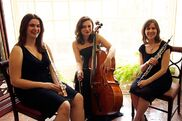 Pittsburgh, PA Acoustic Trio | Arioso