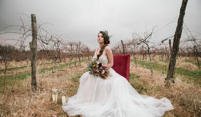 Ellynne Bridal Bridal Salons Lincoln Ne