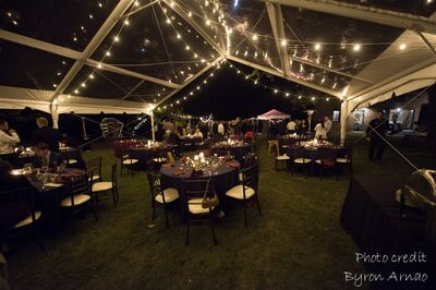 Master Rental Tent & Event