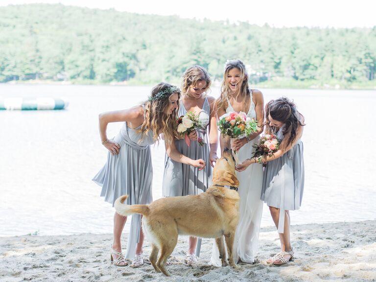 New Hampshire wedding dog