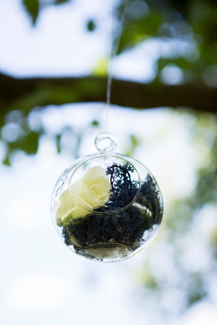 Alison and Chris hung glass terrariums with white roses from the large tree at the front of their ceremony in the secret garden.