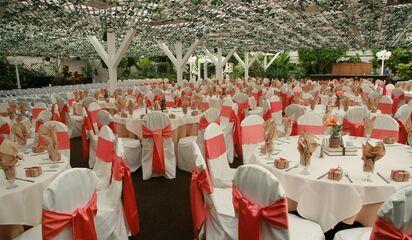 DEBORAH: Rainbow gardens las vegas wedding prices